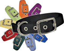 All Dog & Cat Collars product image.