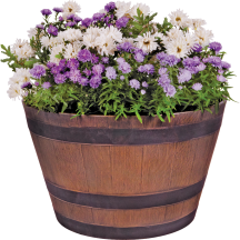 """Whiskey Barrel Planter 20-1/2"""" diam. X 12-1/4""""H. Flowers sold separately. (7218282) product image."""