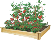 4' X 4' Cedar Raised Garden Bed   (7364904) product image.