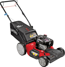 "Craftsman® 21"" Self-Propelled Mower with Rear Bag Side discaharge & mulch capability. 163cc OHV engine, Limit 1 at this price (7435274) product image."