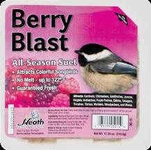 Bird Suet, 11-1/4 Oz. 8294530, 8294548, 8294555, 8294563 product image.